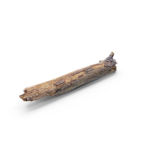Branch: Broken Wooden Stick PNG & PSD Images