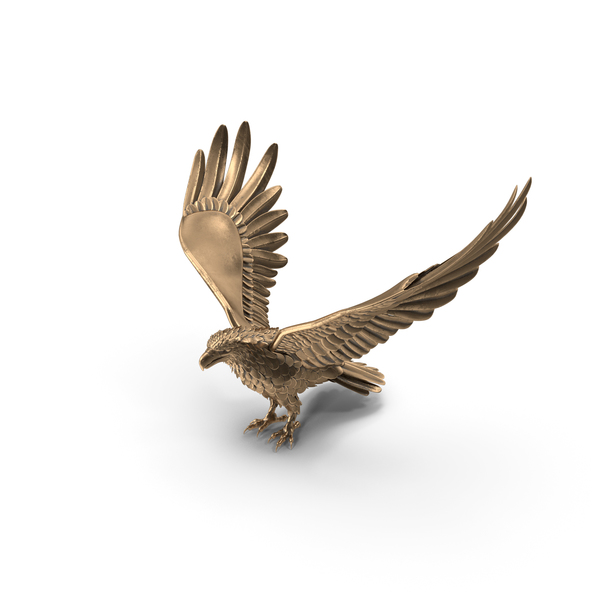 Statue: Bronze Eagle PNG & PSD Images