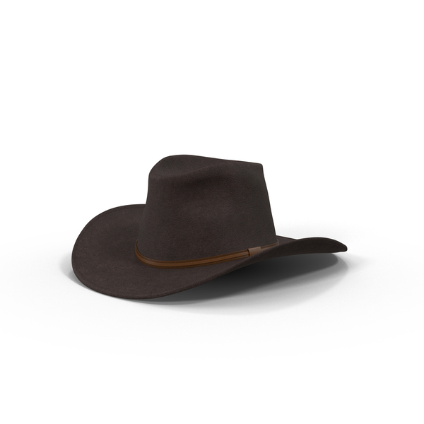 Brown Cowboy Hat Object