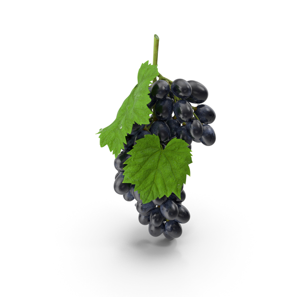 Bunch of Black Grapes PNG & PSD Images