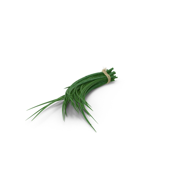 Bundle of Chives PNG & PSD Images