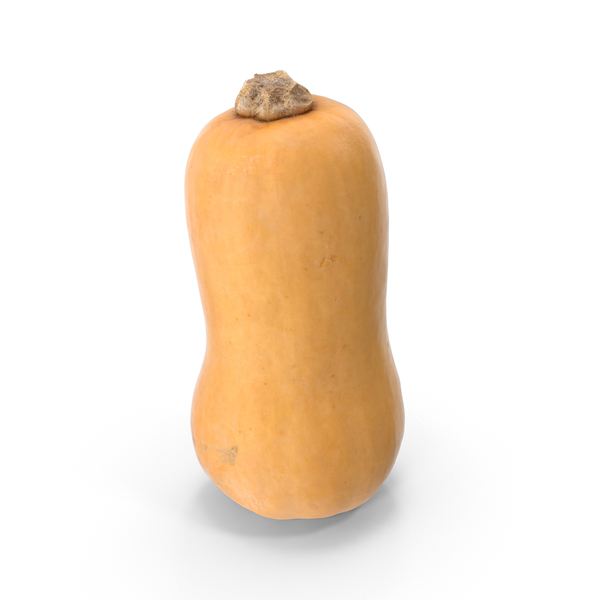 Butternut Squash PNG & PSD Images