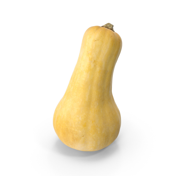 Vegetable: Butternut Squash PNG & PSD Images