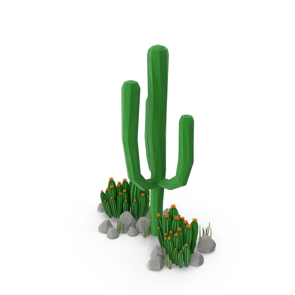 Cacti and Rocks PNG & PSD Images