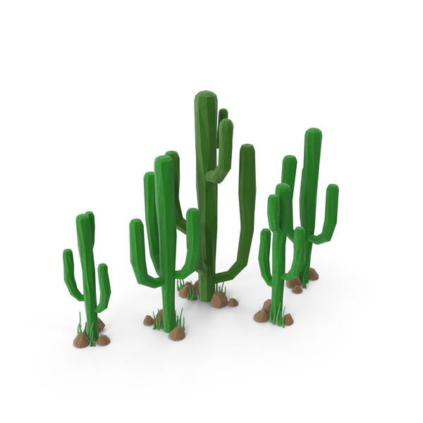 Cactus Group with Rocks PNG & PSD Images