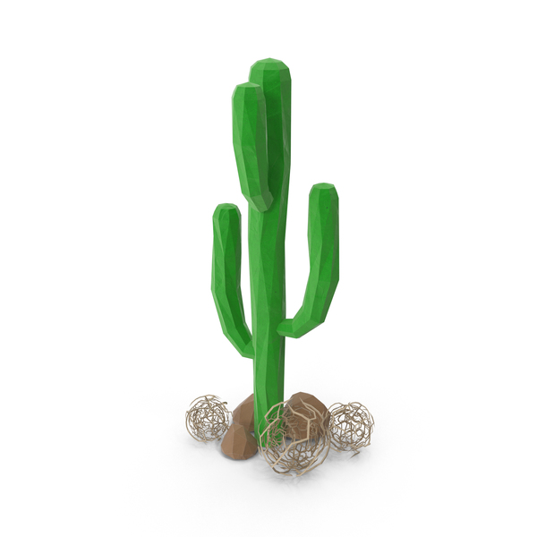 Cactus with Rocks PNG & PSD Images