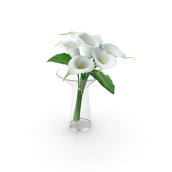 Calla Lilies Bouquet in Glass Vase PNG & PSD Images
