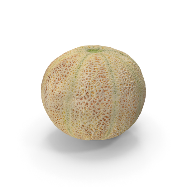 Cantaloupe Melon PNG & PSD Images