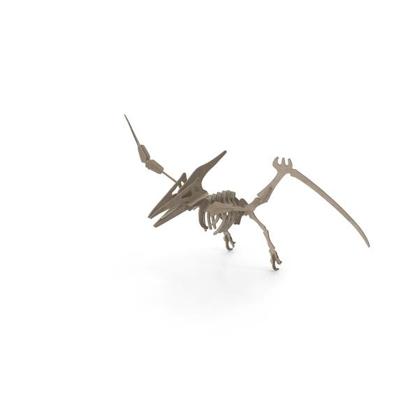 Dinosaur Skeleton: Cardboard Pteranodon PNG & PSD Images