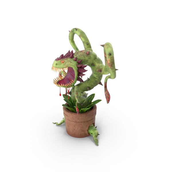 Carnivorous Flytrap Plant PNG & PSD Images