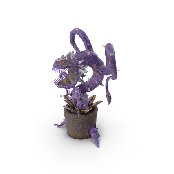 Carnivorous Flytrap Plant Purple PNG & PSD Images