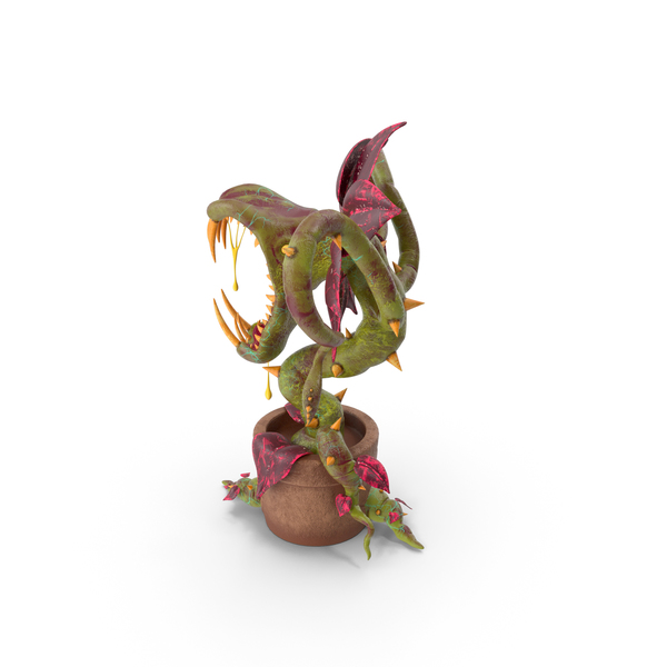 Carnivorous Plant PNG & PSD Images