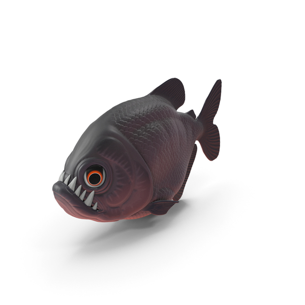 Cartoon Piranha PNG & PSD Images