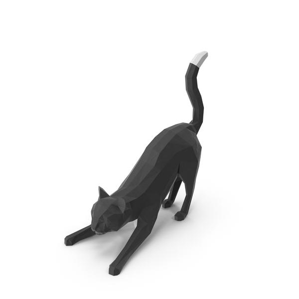 Cat Object