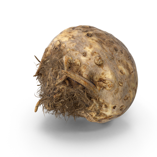 Celery Root PNG & PSD Images