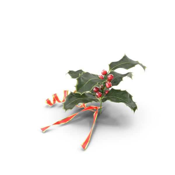 Decoration: Christmas Holly PNG & PSD Images