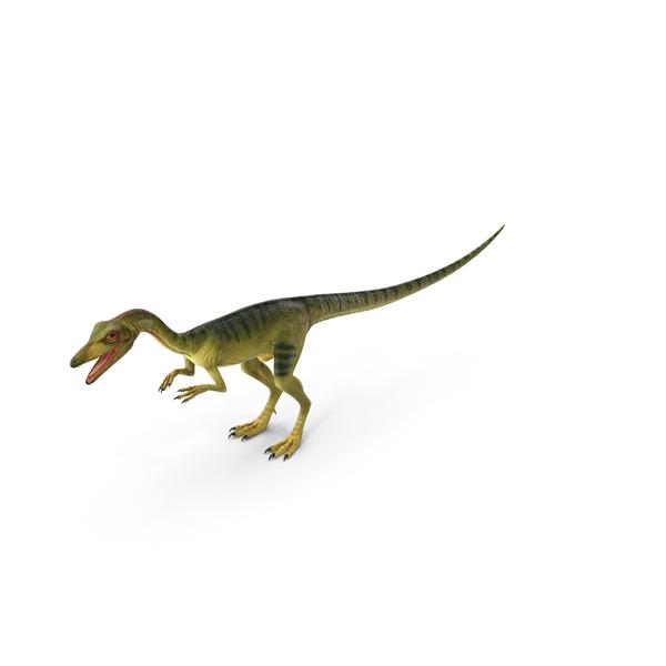Compsognathus Carnivorous Dinosaur PNG & PSD Images