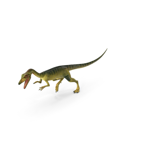 Compsognathus Dinosaur Run Pose PNG & PSD Images