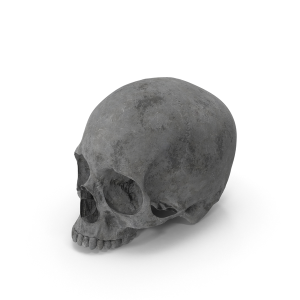 Concrete Skull No Jaw PNG & PSD Images