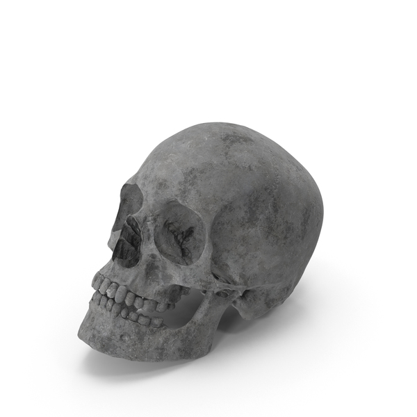 Concrete Skull PNG & PSD Images