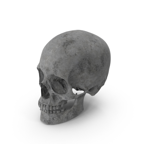 Concrete Skull Object