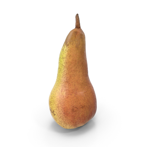 Conference Pear PNG & PSD Images