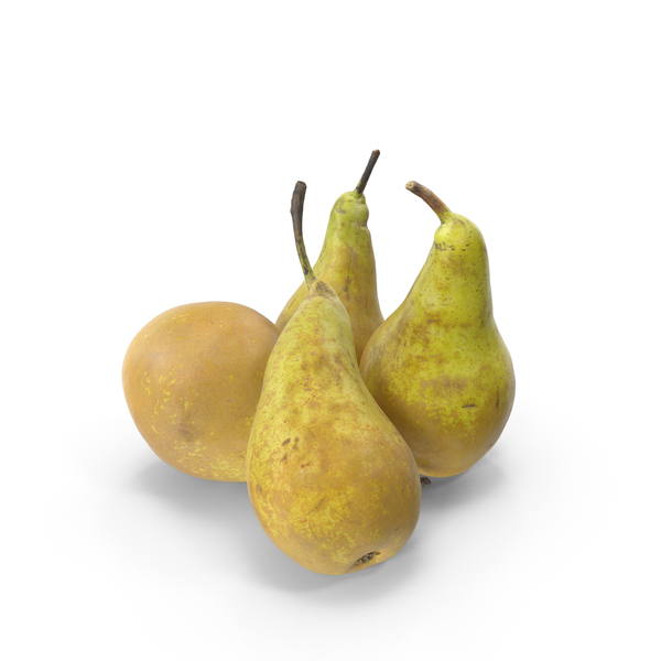 Conference Pears PNG & PSD Images