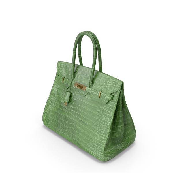 Crocodile Handbag Green PNG & PSD Images