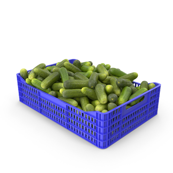 Cucumbers Gherkin in Plastic Crate PNG & PSD Images