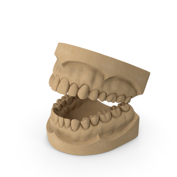 Dental Mold PNG & PSD Images