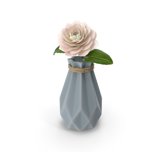 Diamond Shape Vase with Camelia Flower PNG & PSD Images