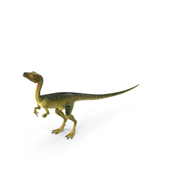 Dinosaur Compsognathus Worried Pose PNG & PSD Images