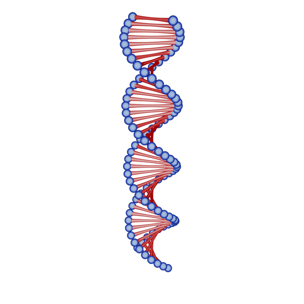 DNA Cartoon PNG & PSD Images