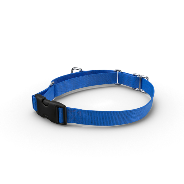 Pet: Dog Collar Object