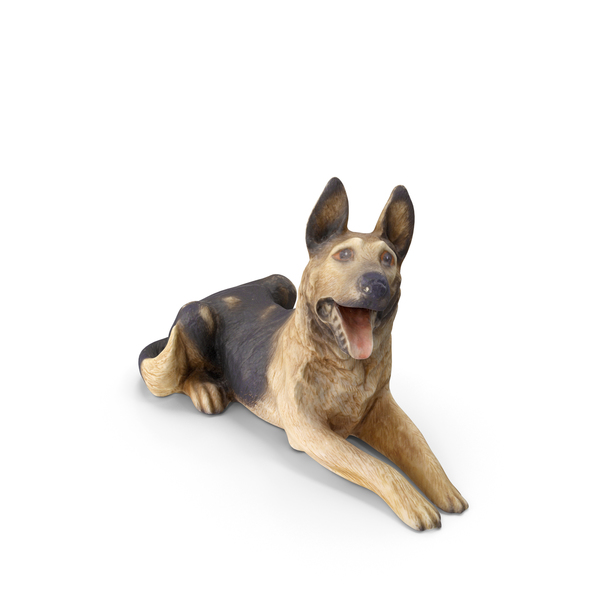Dog Decor PNG & PSD Images
