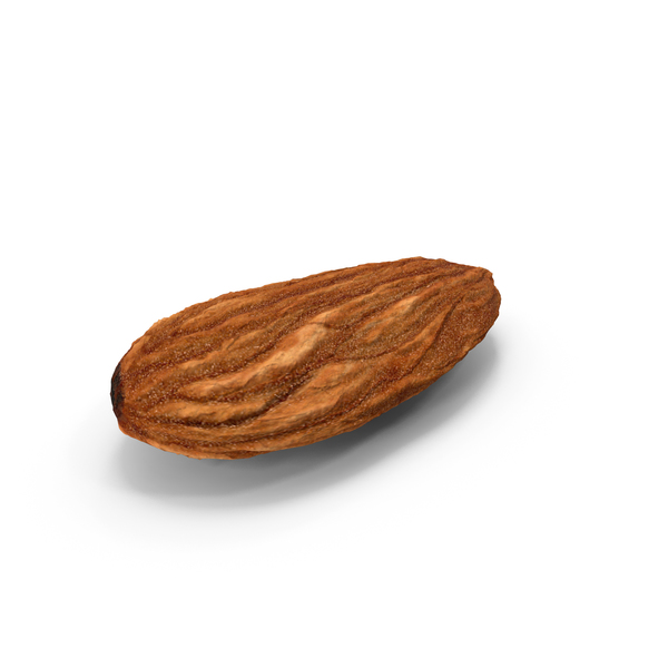 Dry Almond PNG & PSD Images