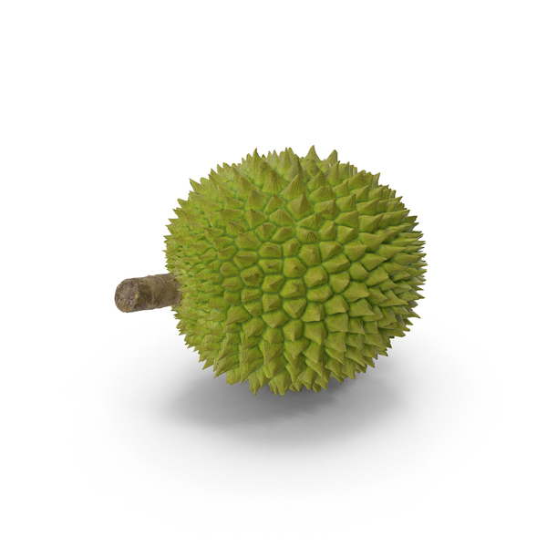 Durian Fruit PNG & PSD Images