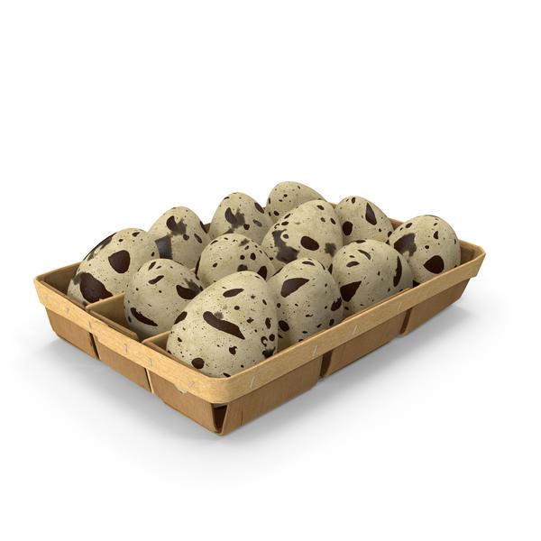 Egg Carton: Eggs Quail Box PNG & PSD Images