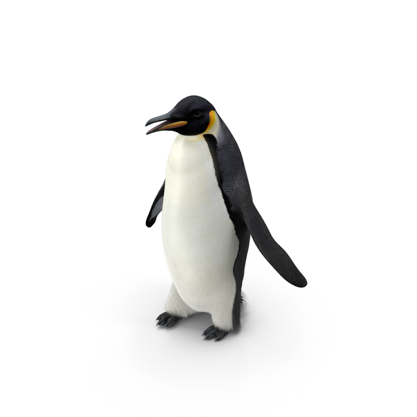Emperor Penguin PNG & PSD Images