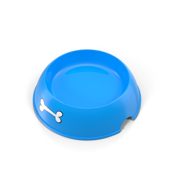 Empty Dog Food Bowl Object