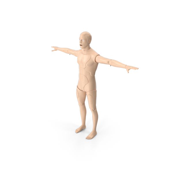 First Aid Training Manikin T-Pose PNG & PSD Images