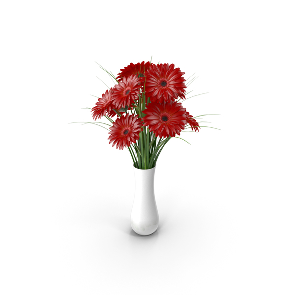 Flowers Gerbera Red PNG & PSD Images