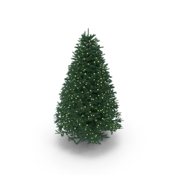 Full Christmas Tree PNG & PSD Images