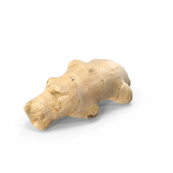 Ginger Root 08 PNG & PSD Images