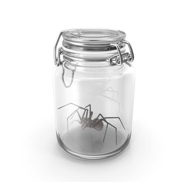 Glass jar with spider PNG & PSD Images