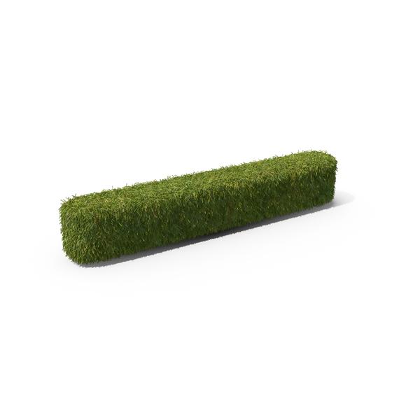 Grass Backslash Symbol PNG & PSD Images