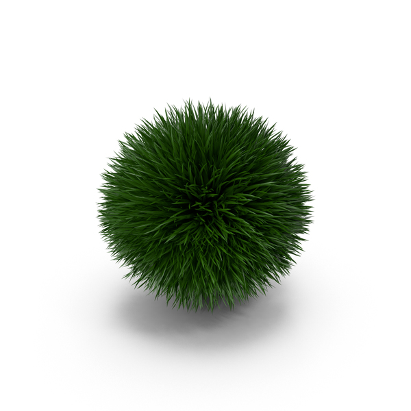 Ornamental: Grass Ball PNG & PSD Images