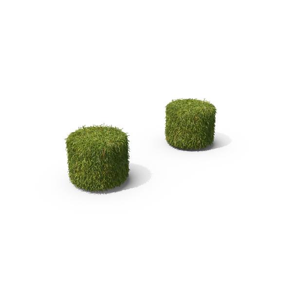 Grass Colon Symbol PNG & PSD Images