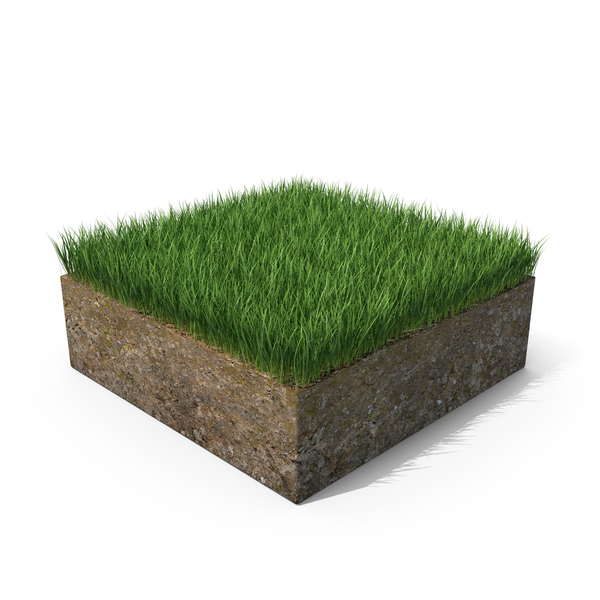 Grass Cross Section with Soil PNG & PSD Images