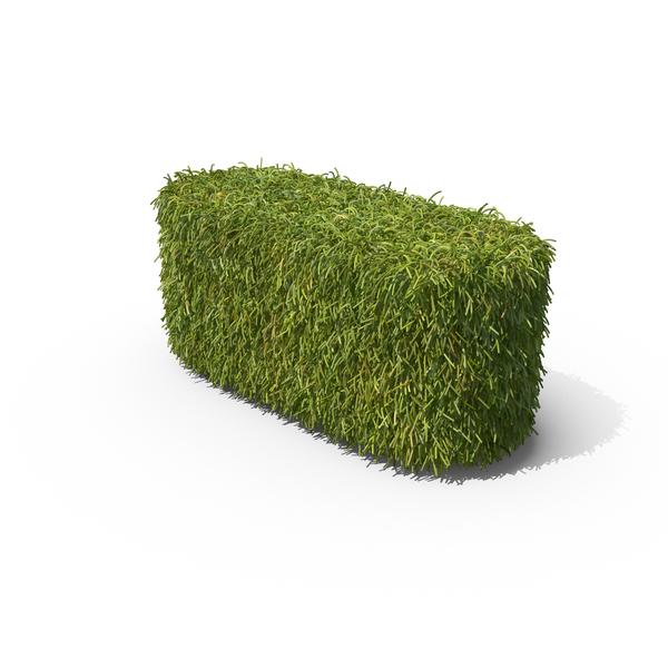 Grass Dash Symbol PNG & PSD Images